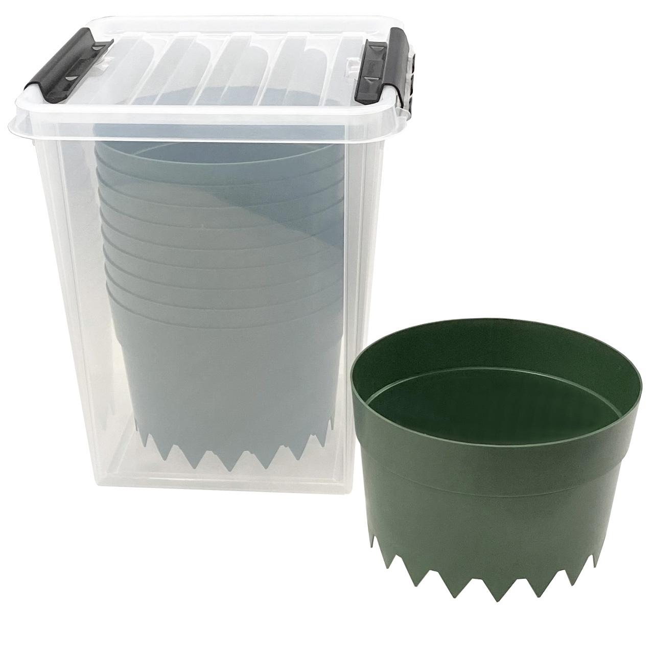 AQUARING 10er-Set, Ø 20 cm GRÜN in Einer praktischen Aufbewahrungsbox